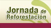 Boletin 221/2010 CDHDF, PAOT y CORENA siembran 2 mil árboles en la Delegación Milpa Alta