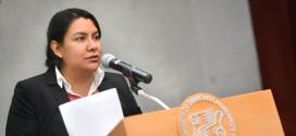 Palabras de la Doctora Perla Gómez Gallardo, Presidenta de la CDHDF, en la presentación de la Recomendación 15/2015
