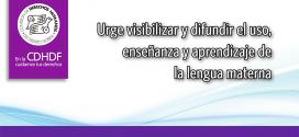 Urge visibilizar y difundir el uso, enseñanza y aprendizaje de la lengua materna