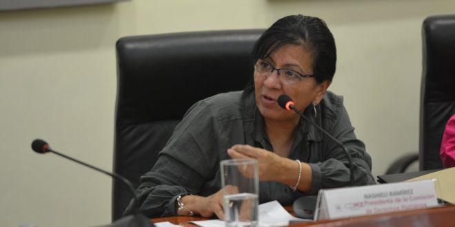 Palabras de la Presidenta de la CDHDF, Nashieli Ramírez, en la reunión con la Relatora de Pueblos Indígenas de la ONU