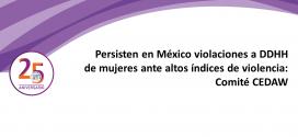 Persisten en México violaciones a DDHH de mujeres ante altos índices de violencia: Comité CEDAW