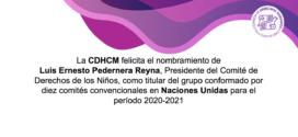 La CDHCM felicita el nombramiento de Luis Ernesto Pedernera Reyna, Presidente del Comité de Derechos de los Niños, como titular del grupo conformado por diez Comités convencionales en Naciones Unidas para el período 2020-2021