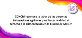 CDHCM reconoce la labor de las personas trabajadoras agrícolas para hacer realidad el derecho a la alimentación en la Ciudad de México