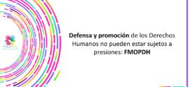 Defensa y promoción de los Derechos Humanos no pueden estar sujetos a presiones: FMOPDH