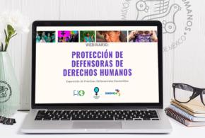 Galería: Webinario «Protección de Defensoras de Derechos Humanos»