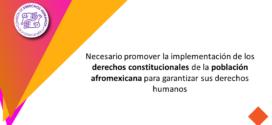Necesario promover la implementación de los derechos constitucionales de la población afromexicana para garantizar sus derechos humanos
